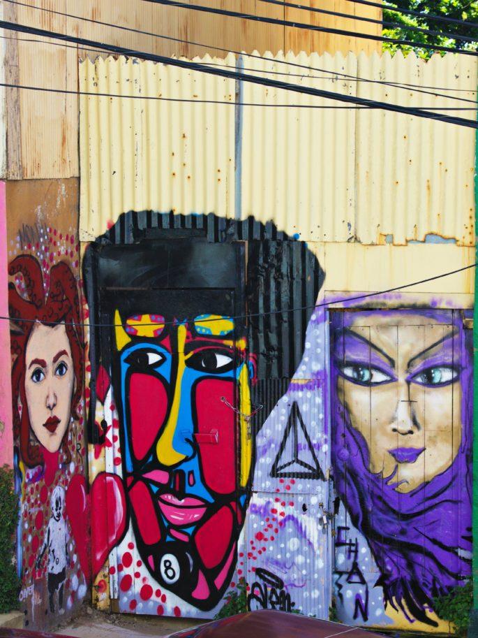 graffiti valparaiso,colors valparaiso,murals valparaiso,valparaiso cute streets,streets valparaiso,street art valparaiso,valparaiso,valparaiso cats, art valparaiso,grape casablanca,casablanca chile,wine region chile,wine santiago,wine making santiago,wine casablanca,ladybug,organic vineyards casablanca,casablanca organic vineyards,wine tour santiago,wine displays,vineyards santiago,handmade santiago,Food in Santiago,Santiago sunset
