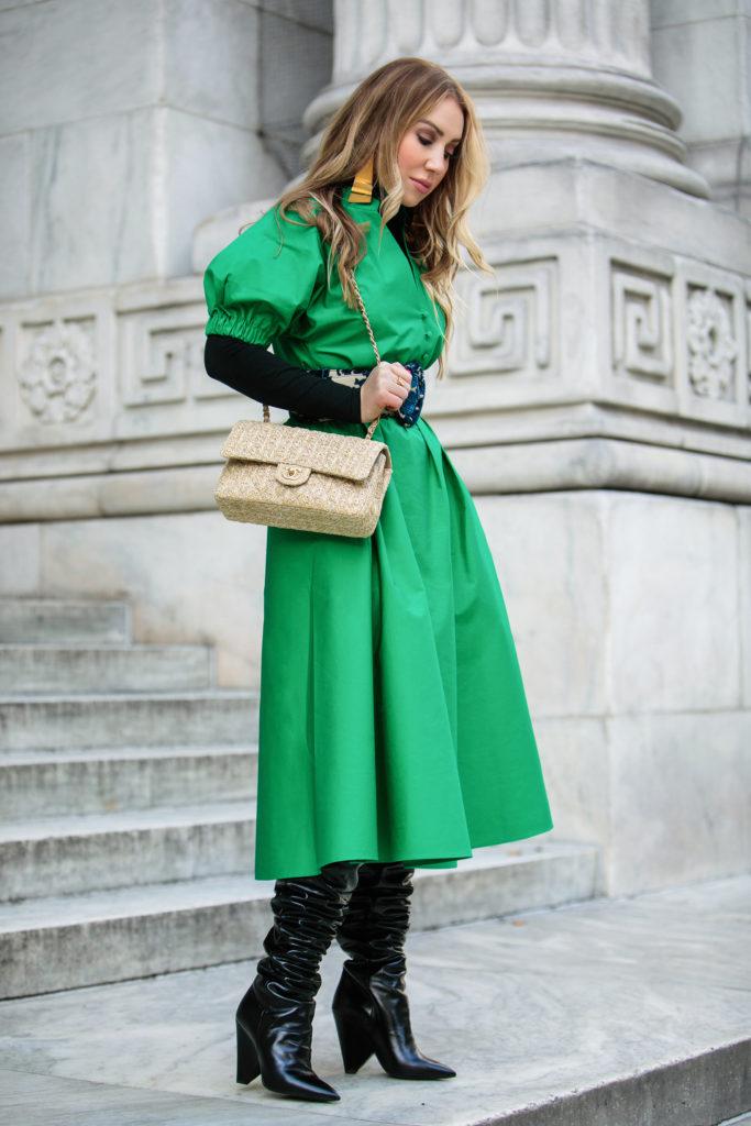 Green La Vie Du Papillon